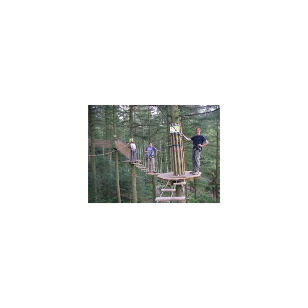 A fun treetop adventure course